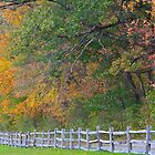Fence along an Autumn Meadow by John Butler