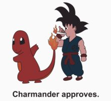 Charmander Approves by RashedAlmetrami