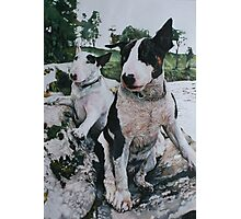 Bosun and Isis by the River Photographic Print