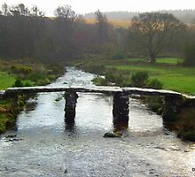 1870 Clapper Bridge, Pondbridge, Dartmoor by Dawn Warren
