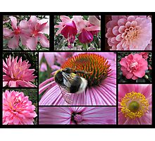 Floral Pink Photographic Print