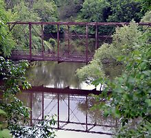 Bridge through Trees by tom j deters