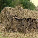 Forgotten Cabin by Annlynn Ward