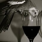 Pinot Time!! by Lou Wilson