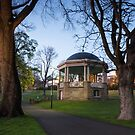 Early Morning in St Davids Park, Hobart, Tasmania #5 by Chris Cobern