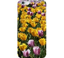 Field of tulips iPhone Case/Skin