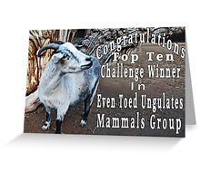 ✿◕‿◕✿  ❀◕‿◕❀ EVEN TOES UNGULATES MAMMALS BANNER 4 CHALLENGE✿◕‿◕✿  ❀◕‿◕❀   Greeting Card