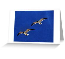 Soaring Way Up High Greeting Card