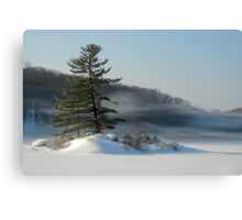 Little Long Pond In Winter Canvas Print