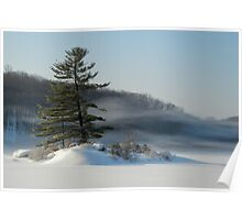 Little Long Pond In Winter Poster