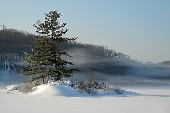 Little Long Pond In Winter by JHRphotoART