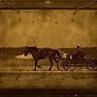 Amish Farmer by Vickie Emms