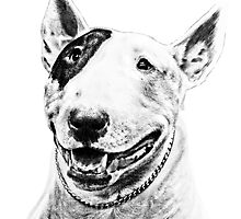 Comical Bull Terrier by Marcia Rubin