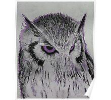 Violet Owl Poster