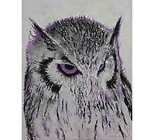 Violet Owl Photographic Print