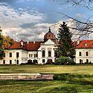 Royal Castle by Mariann Kovats