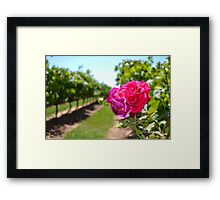 It's a flower Framed Print