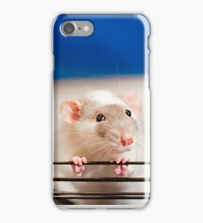 Begging for Popcorn iPhone Case/Skin