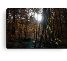 Autumn, Slovenia Canvas Print