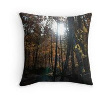 Autumn, Slovenia Throw Pillow