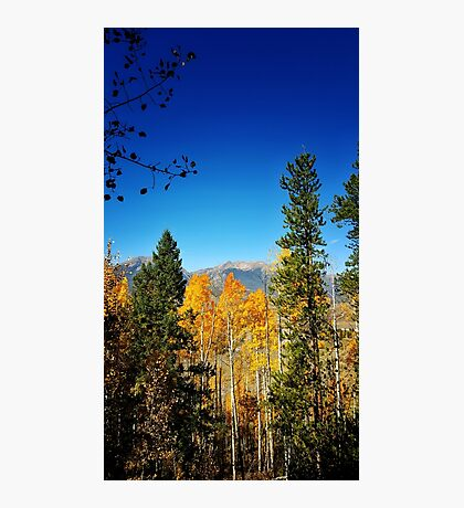 Fall Colors in the Rockies Photographic Print