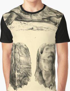 The Reptiles of British India by Albert C L G Gunther 1864 0481 Geormyda Grandis Turtle Graphic T-Shirt