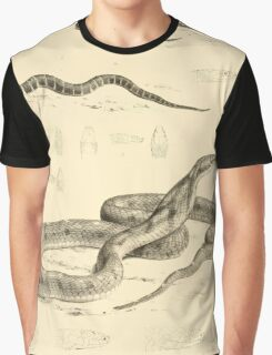 The Reptiles of British India by Albert C L G Gunther 1864 0523 Snakes Graphic T-Shirt