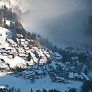 The Misty Valley by Brendan Schoon