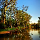 Round Water Hole by Tracie Louise
