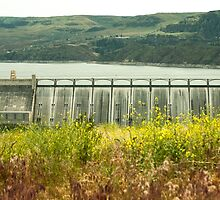 Grand Coulee Dam by tsarts