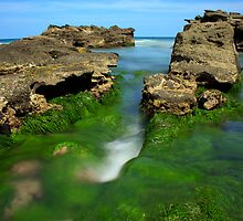 Sea of Green_Caves Beach by Sharon Kavanagh