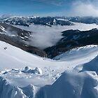 Snowman's Paradise by Brendan Schoon