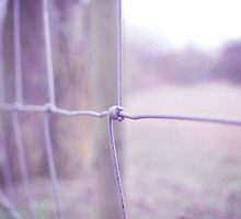 fence by missbex