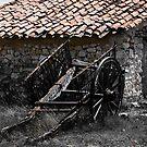 the last load, abandoned hay cart, Maestrazgo, Spain by Andrew Jones