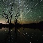Space Station Meets Comet Lovejoy #2 by Wayne England