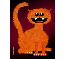 MARMALADE CAT Photographic Print