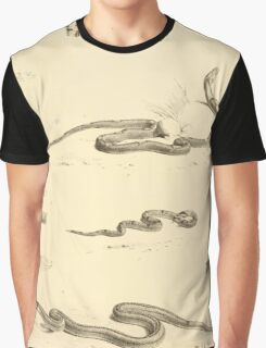 The Reptiles of British India by Albert C L G Gunther 1864 0519 Snakes Graphic T-Shirt