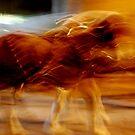 Speeding Horses by nadinecreates