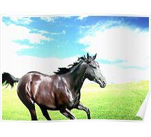 Free Running Horse Poster