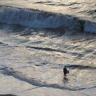Wave II - Ola II, Playa Olas Altas by PtoVallartaMex