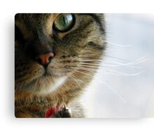 What are you thinking? Canvas Print