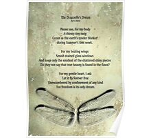 A Dragonfly's Dream Poster