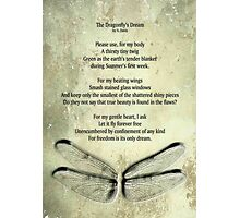 A Dragonfly's Dream Photographic Print