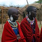 Massai Wives of the Serengeti by John Dalkin
