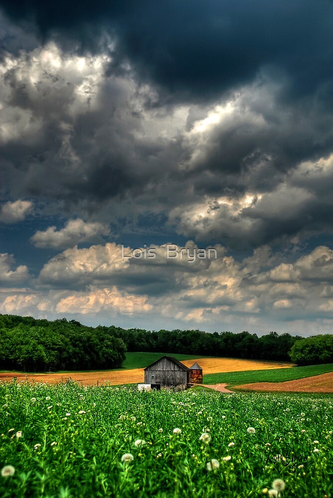 Brooding Sky by Lois  Bryan