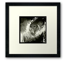 The Masked Women In The Feather Hat Framed Print