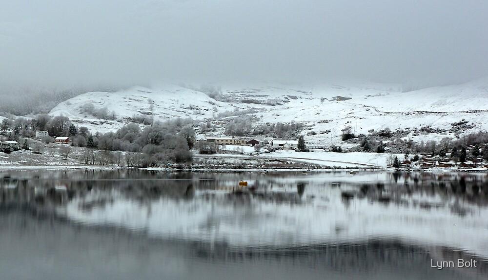 Highland Village in the Winter by Lynn Bolt