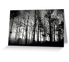 Fog Mist Darkness Forest Rain Trees Greeting Card