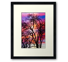 Colorful Silhouetted Trees 12 Framed Print