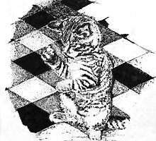 Cat on Tile by Steve Williams